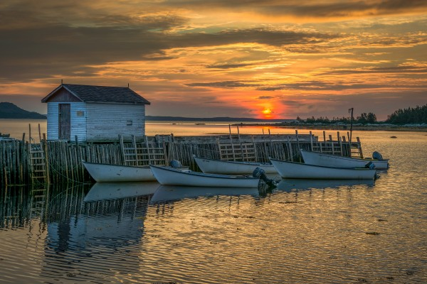 Boats of Embree by David Brophy