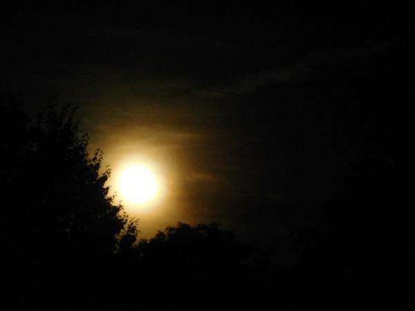 Full Moon  summer 2019 by Debbie Caughey