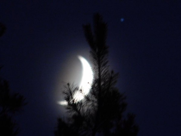 Crescent moon and Jupiter  by Debbie Caughey