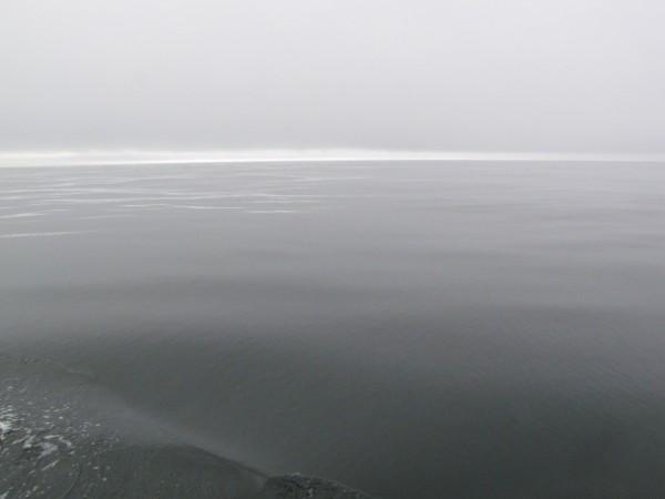 Pacific July Morn by Dee Vanggo