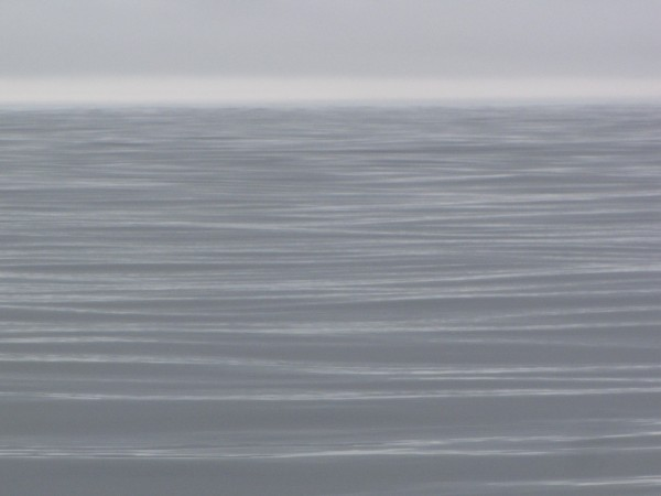 West Coast Foggy Morn by Dee Vanggo