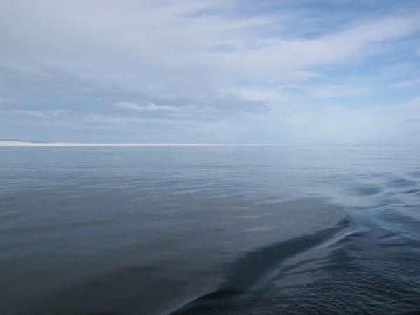 Pacific Waters by Dee Vanggo