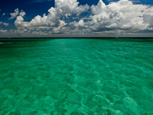 Clear water Ci by Destin30A Drone