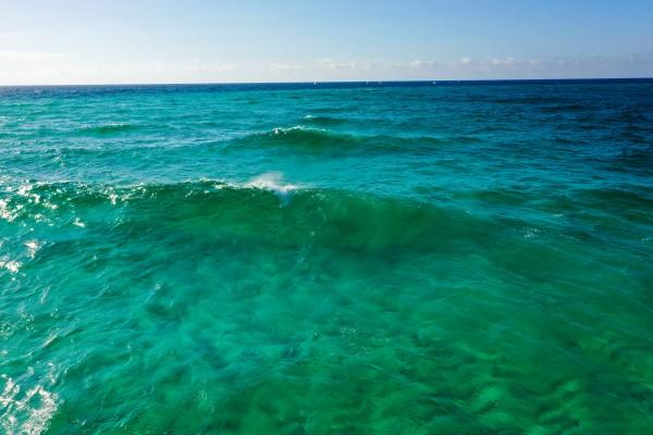Surf  by Destin30A Drone