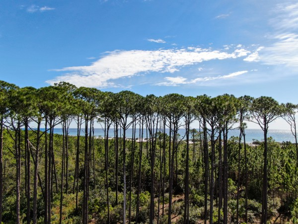 30A Western Lake Canopy by Destin30A Drone