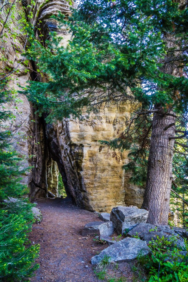 Hike Through Stone by Diane Mintle
