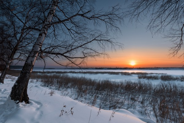DSC_5951 1 by Dobrydnev