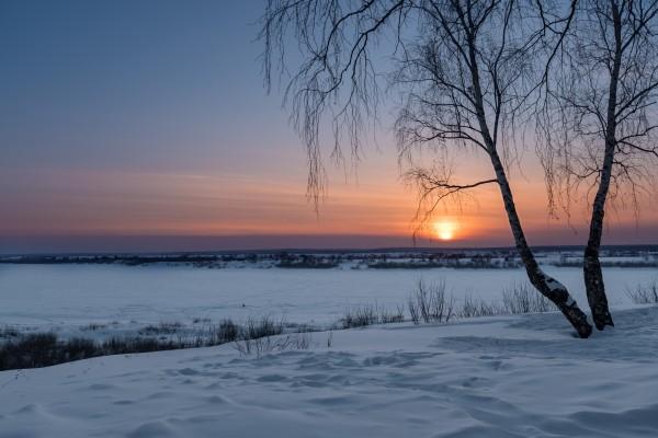 DSC_5963 1 by Dobrydnev