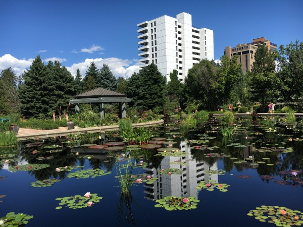 Denver-Botanical-Gardens-7 by Dogtown Guy