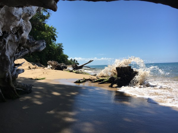 Rincon-Puerto-Rico-2019-16 by Dogtown Guy