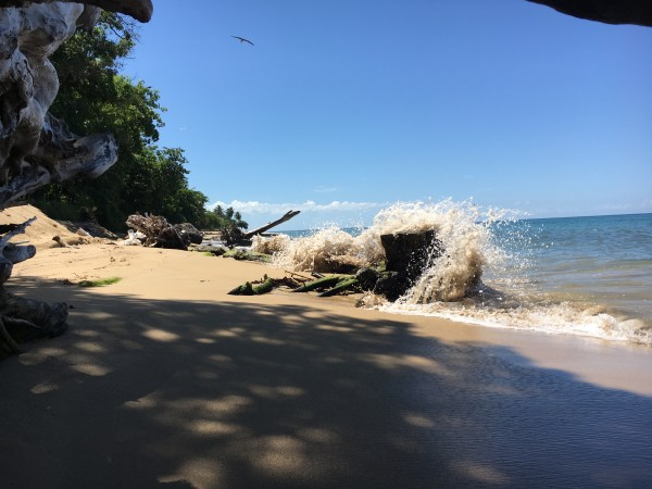 Rincon-Puerto-Rico-2019-8 by Dogtown Guy