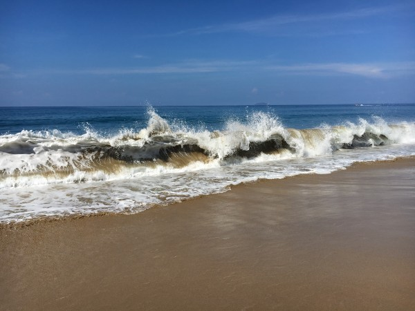 Rincon-Puerto-Rico-2019-26 by Dogtown Guy