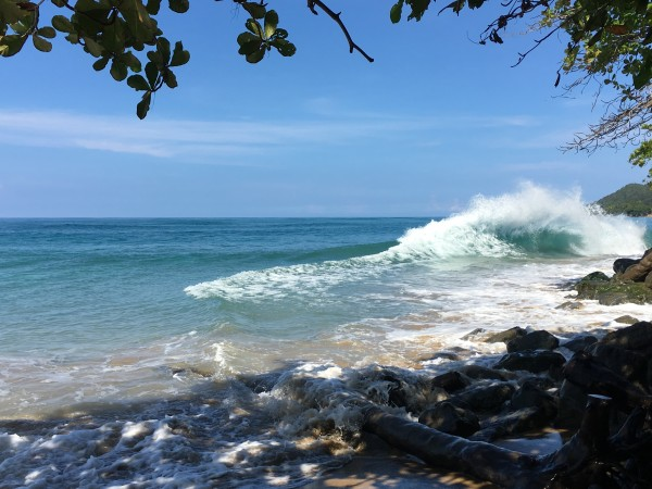 Rincon-Puerto-Rico-2019-18 by Dogtown Guy