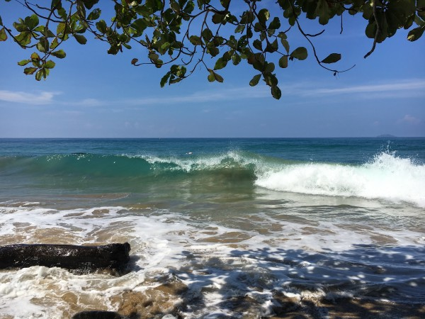 Rincon-Puerto-Rico-2019-23 by Dogtown Guy