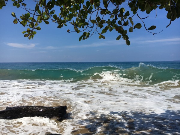 Rincon-Puerto-Rico-2019-24 by Dogtown Guy