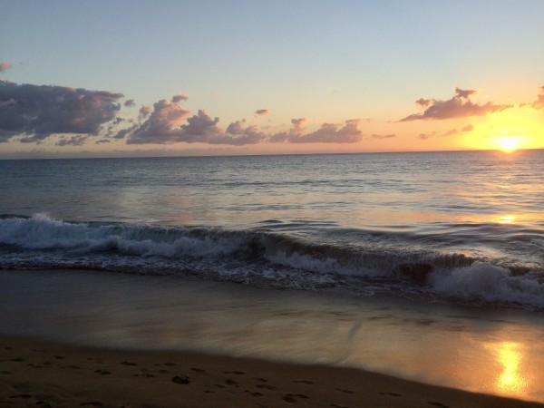 Rincon-Puerto-Rico-2019-10 by Dogtown Guy