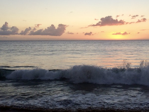 Rincon-Puerto-Rico-2019-15 by Dogtown Guy
