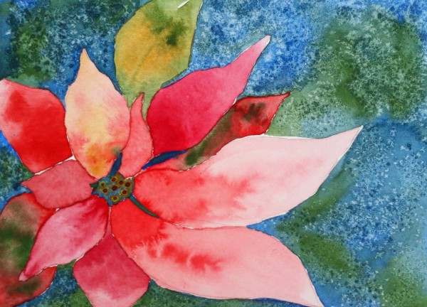 Poinsettia by Donna Stares