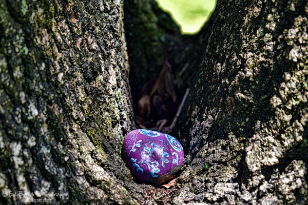 a purple stone on the road 1 2 by Eduardo Bravo
