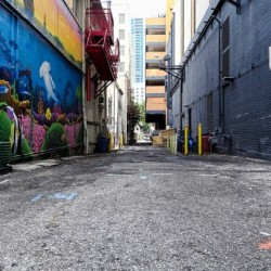 alleyway by Ed Bravo