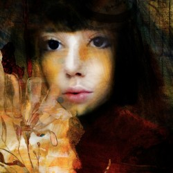 In the stare...the answer arose by Elizabeth Berry
