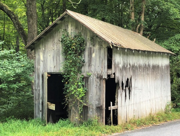 Country Shack by Emerson