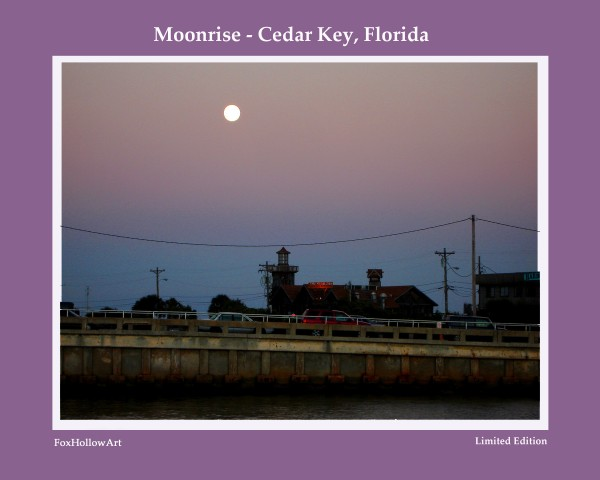 Moon Rise Cedar Key Florida by FoxHollowArt