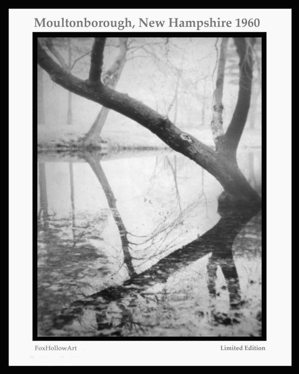 Reflections - Moultonborough - New Hamsphire - 1960 by FoxHollowArt
