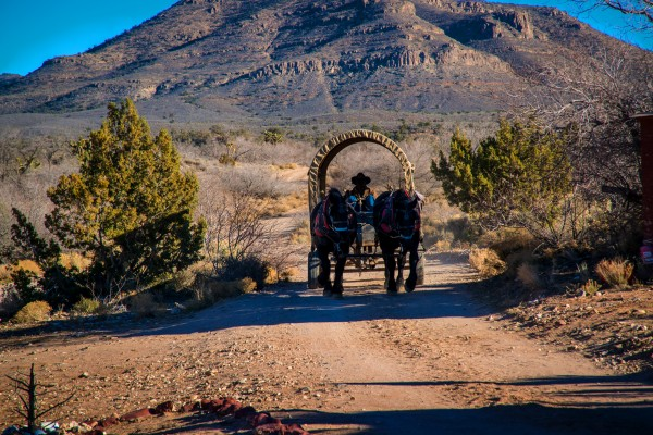 Cowboy ride in a wagon pulled by two western horses in Arizona by Francois Lariviere