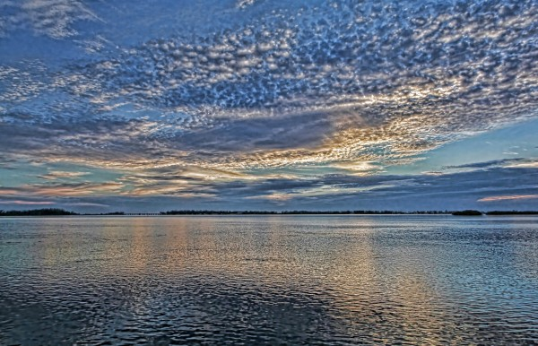 Blue Persuasion by HH Photography of Florida