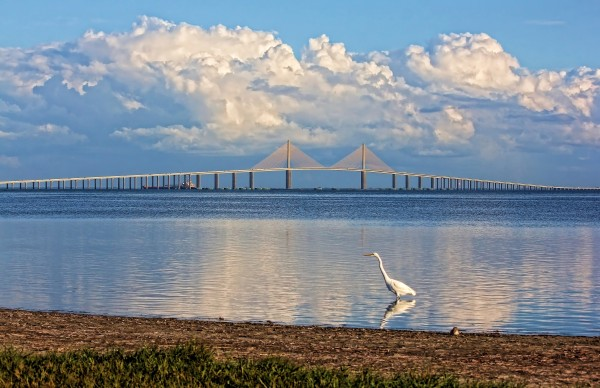 The Sunshine Skyway Bridge by HH Photography of Florida