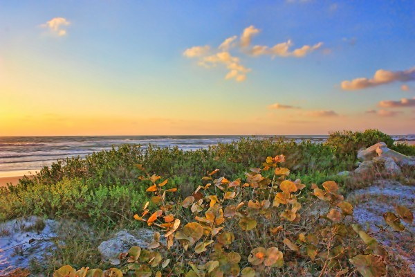 Afternoon Glow by HH Photography of Florida