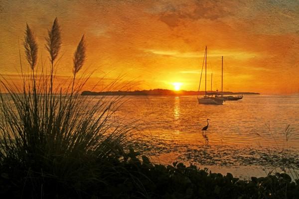 Morning Light Florida Sunrise by HH Photography of Florida