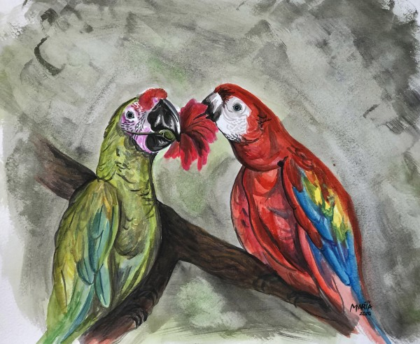 Collection COSTA RICA-Parrots by HUBLOT DESIGN