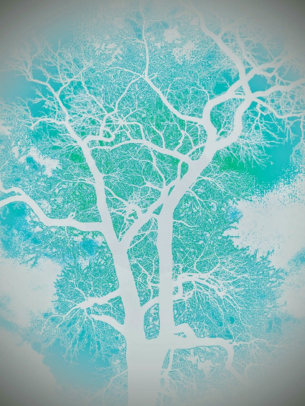 Branches of Watercolor  by Jeremy Lyman