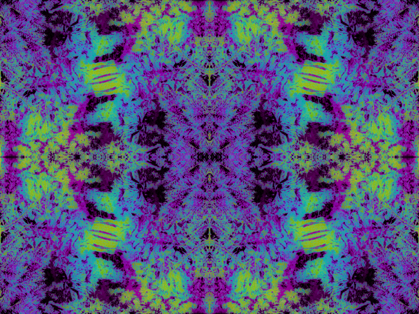 portal B2301822 by Jesse Schilling