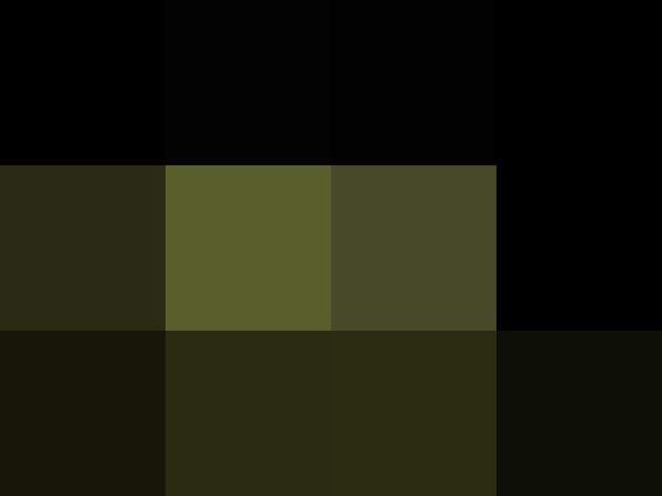 reduci 38B5588E by Jesse Schilling