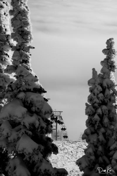 Dec 31 Print 22 by KoricPhoto