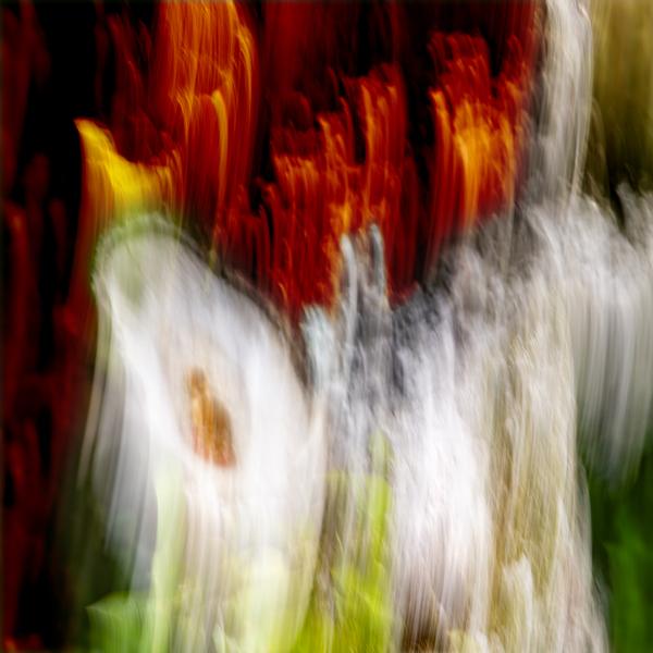 walk down Limited Edition of 5 by Loek van Walsem Photographic Art