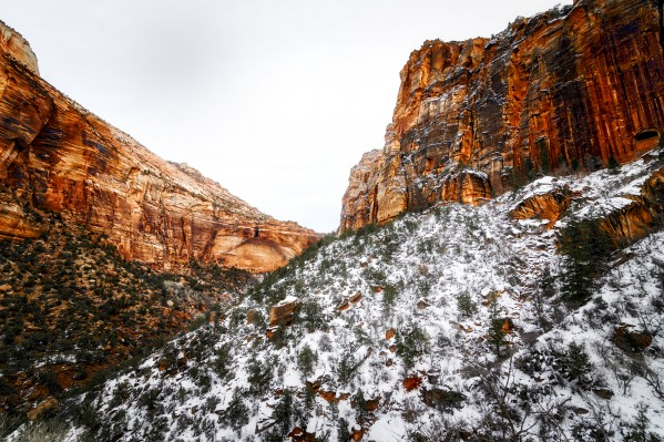 Zion National Park 1 by Luis Bonetti