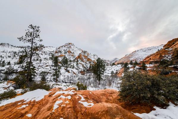Bryce Canyon by Luis Bonetti