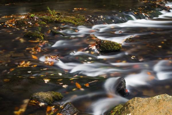 River Flow in Smokey Mountains by Luis Bonetti