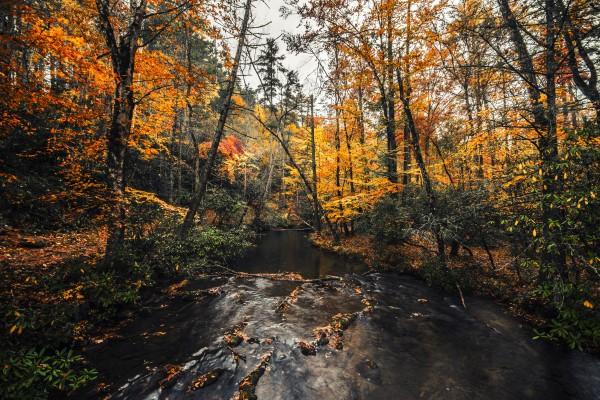 Smokey Mountain River by Luis Bonetti