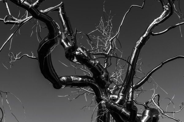 Metal tree by Luis Bonetti
