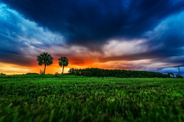 Florida Sunset by Luis Bonetti