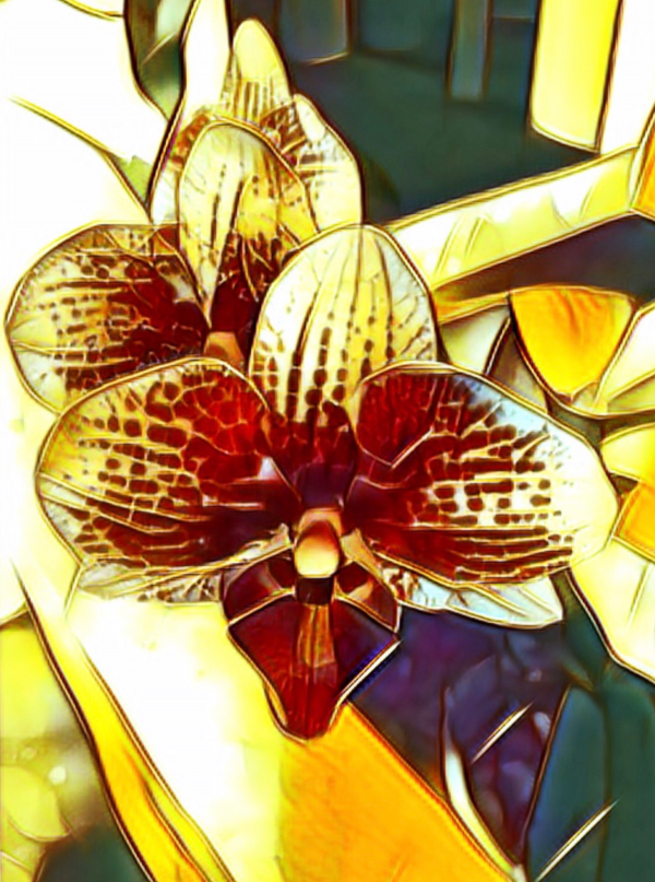 Warm Orchid Abstraction  by Mary Crook