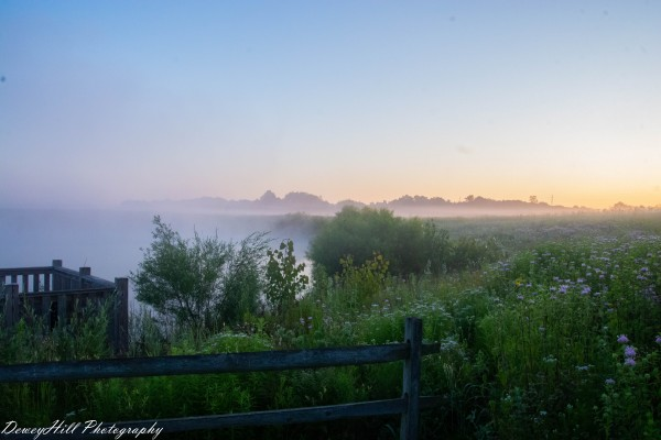 Morning Pond by DeweyHill Photography