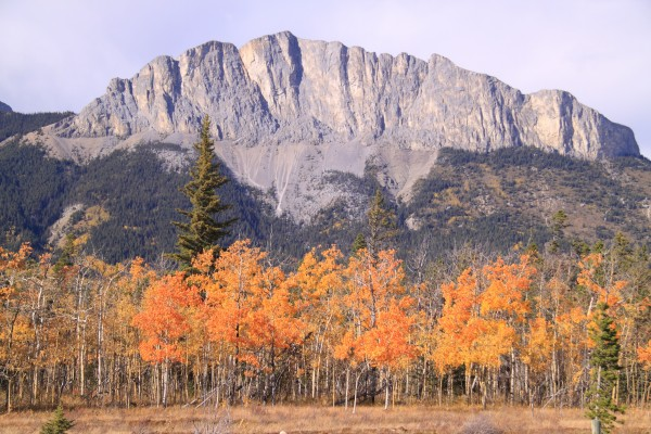 Yamnuska In Fall IMG_3238_1  by Mike Gould Photoscapes