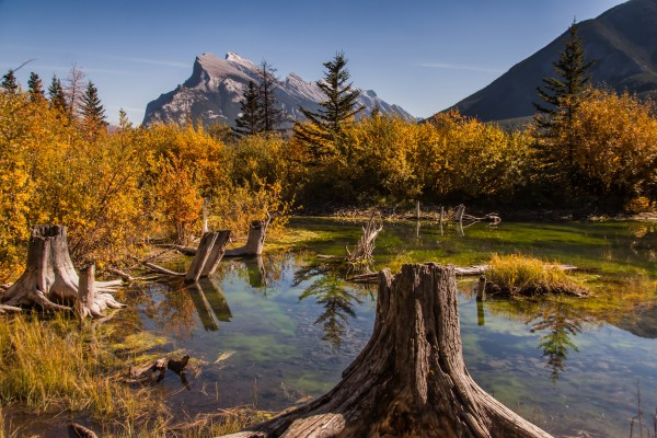 Vermilion Lakes Pond IMG_7045  by Mike Gould Photoscapes