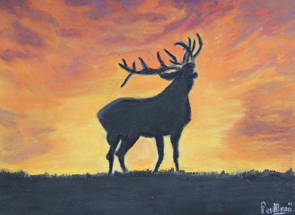 reindeer by Pallavi Sharma